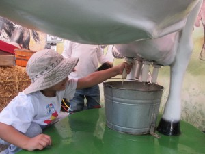 We also got hands on with the milking stations. It being the first time he milked a fake cow, he seemed to be doing it well.