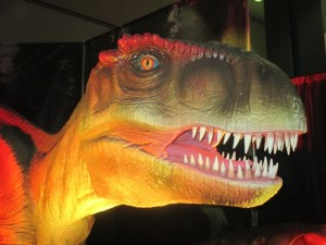 We started our Land of The Lost Adventure with the big dog ... T.Rex himself.