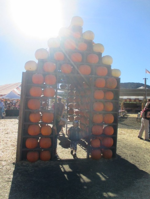 The Pumpkin House was probably one of the funnest structures they discovered.