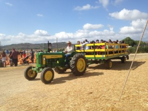 We enjoyed a tractor pulled ride and decided to head to the fields ...